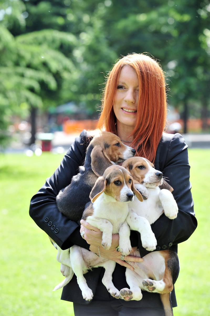 Michela Vittoria Brambilla - I beagle di Grenn Hill